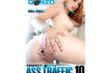 Ass Traffic 10 ( 2015 Full Movies )